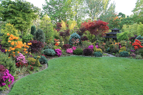 upper garden late spring may 25 detail of above photo ma flickr. Black Bedroom Furniture Sets. Home Design Ideas