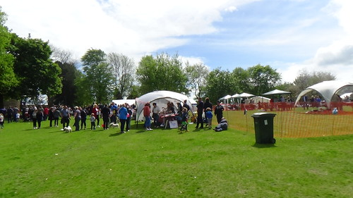 Whickham May Fayre May 16 (5)
