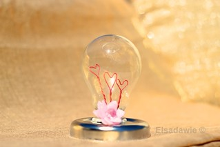Light bulb of love.    3 | by Elsadawie