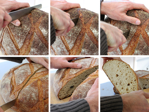 Cutting Tarlee Miche | by PiPs75