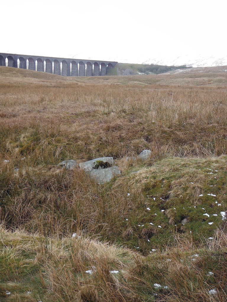 Ribblehead Viaduct 2