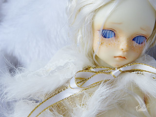 Snow prince | by Craia