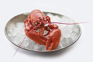 Lobster served in the private dining rooms © Lia Vittone/ROH 2012 | by Royal Opera House Covent Garden