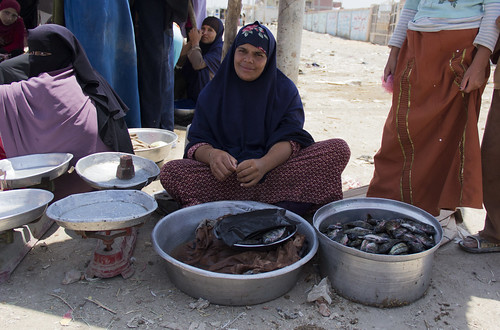 Women selling fish on the roadside, Faiyum, Egypt. Photo by Samuel Stacey, 2012.