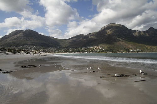 bressay bank hout bay Open a bank account, get a loan, or sign up for internet banking quickly and easily with absa bank  hout bay main road hout bay western cape.