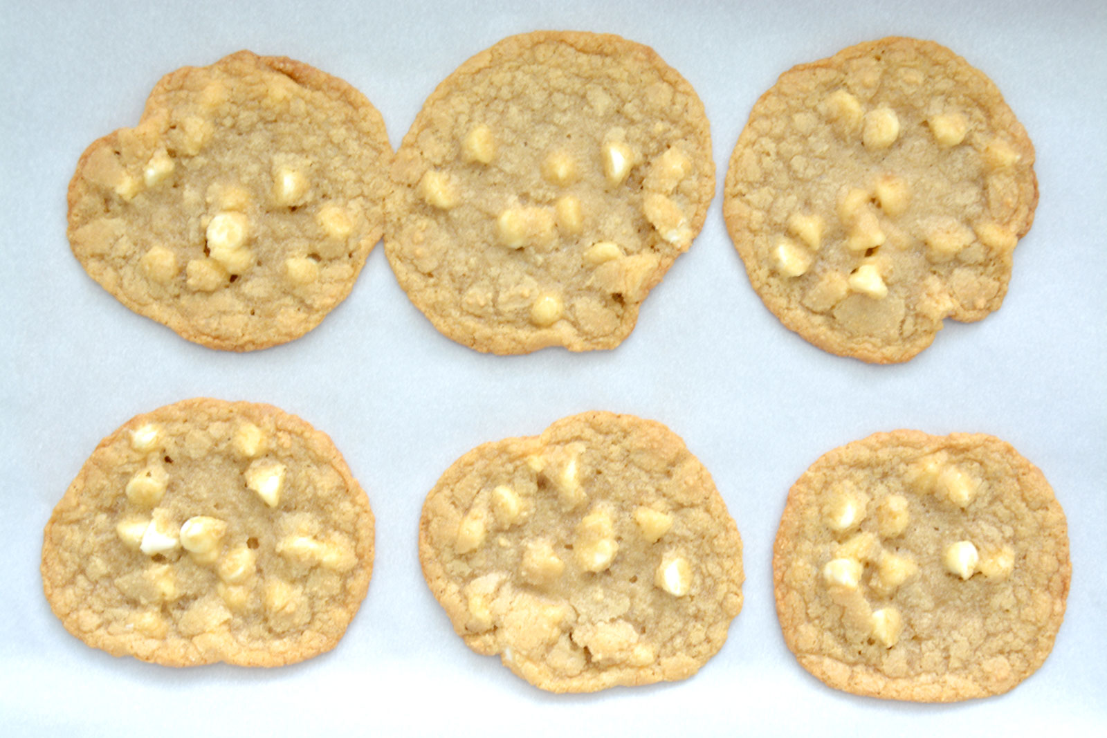 My Favorite Cookie Recipe, Perfect for Milk and Cookies!