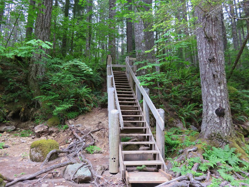 Stairs to the bank of the Lewis River