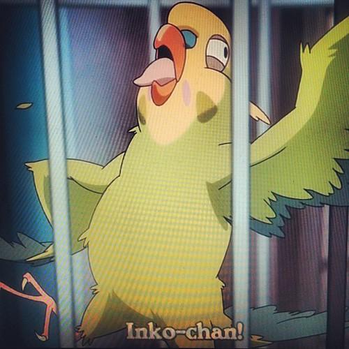 #inko #inkochan #toradora #animal #anime #bird #otaku   Flickr