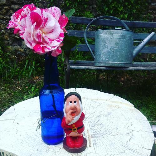 Beer & roses #skollsampleo