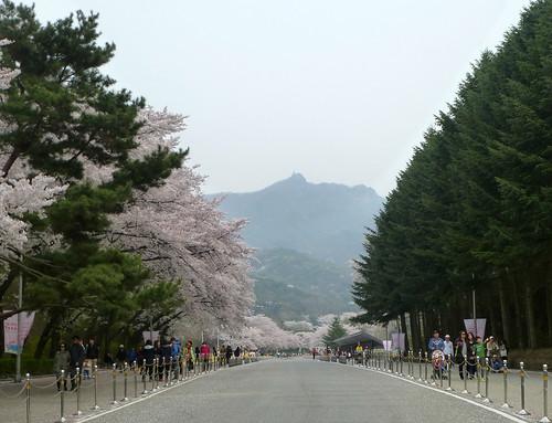 C16-Seoul-Grand Parc-j4 (12)