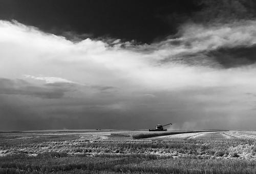 I love western Kansas skies.