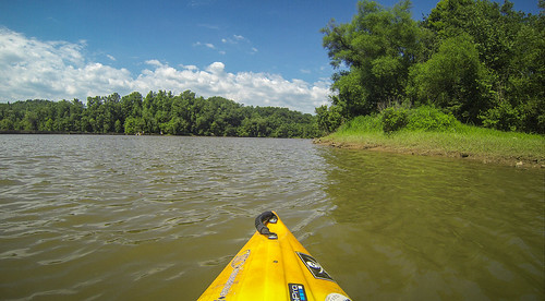 Goat Island in the Broad River-163