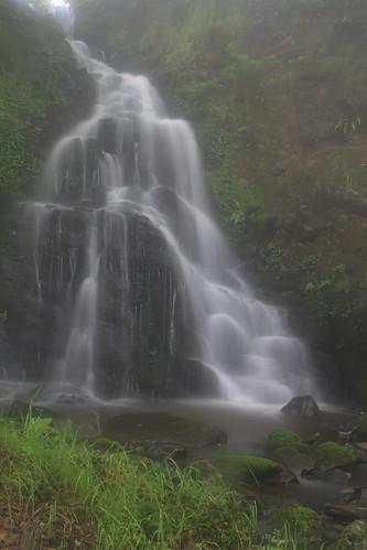 Parque natural de #Gorbeia #Orozko #DePaseoConLarri #Flickr -098