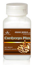 Harga Asli Cordyceps Plus Capsule Green World