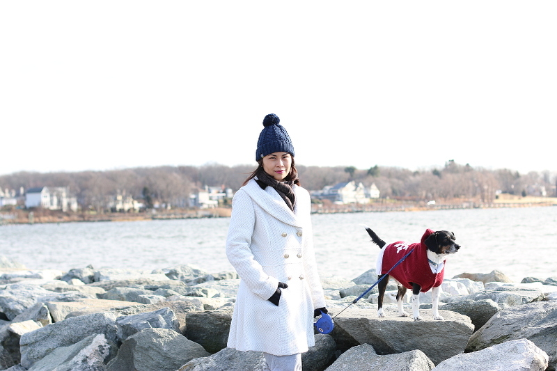 tips-for-traveling-with-pets-3