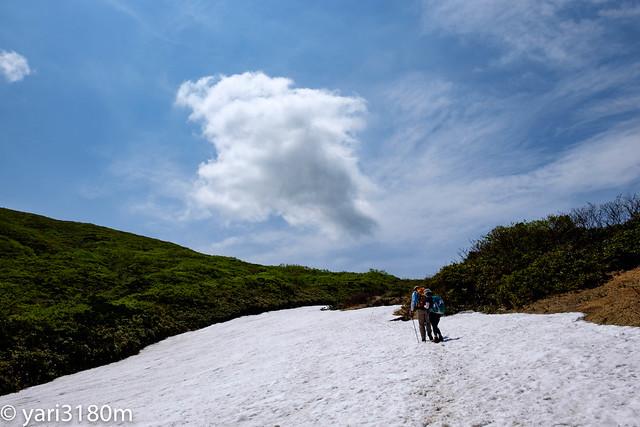 栗駒山雪渓