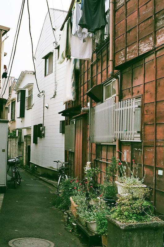 Nikon FM2 湯島・根津 2016年5月29日