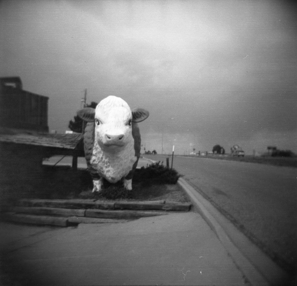 roadside America   by QsySue