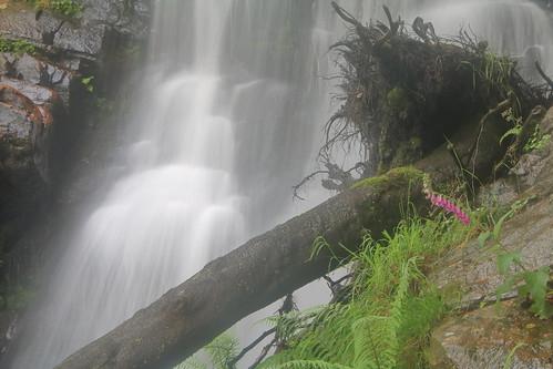 Parque natural de #Gorbeia #Orozko #DePaseoConLarri #Flickr -121