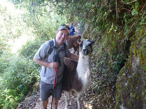 James with a llama
