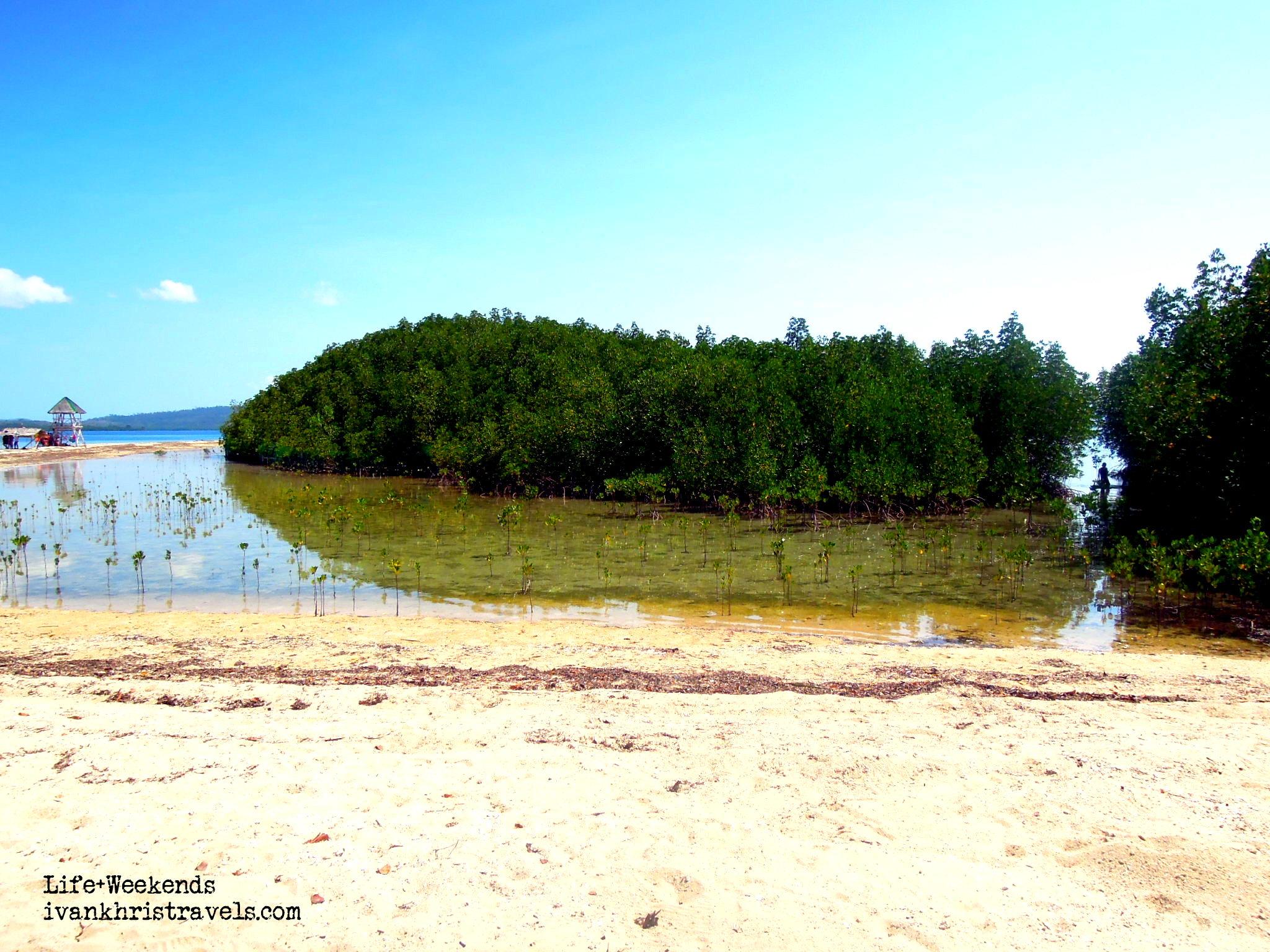 Honda Bay