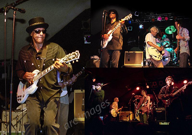 Love, with Arthur Lee, Robin2, Bilston, 2004 and 2005