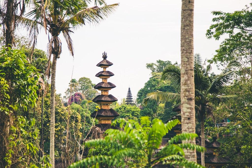 Billeddagbog Bali-1-31