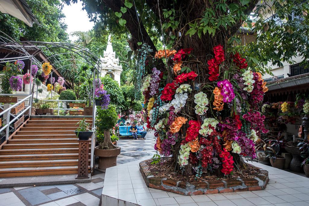 Chiang Mai-01248