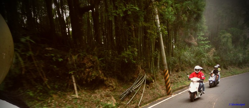 Taiwan Island trips。Couchsurfing。環島景點。南投秘境。忘憂森林。17度C隨拍。  (12)