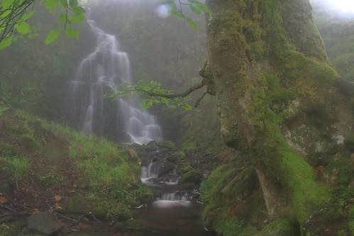 Parque natural de #Gorbeia #Orozko #DePaseoConLarri #Flickr -095
