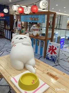 CIRCLEG 香港 遊記 尖沙咀 海港城  LCX NEKO ATSUME 悠遊夏祭 JAPANESE SUMMER FESTIVAL 貓 IPHONE GAME APP (7)