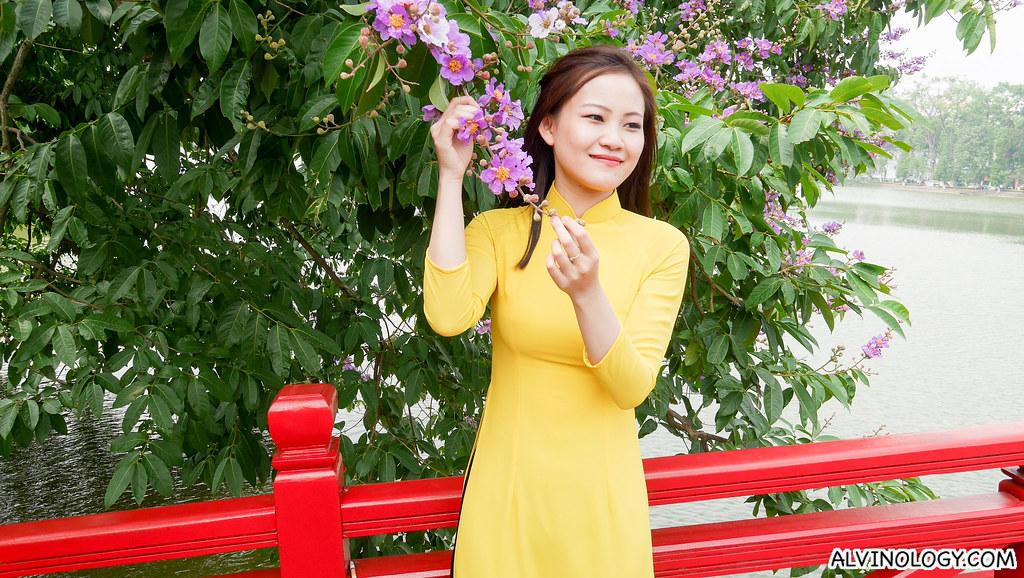 hanoi-alvinology-9930061