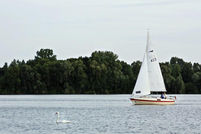 Goldengelchen Sommertag am See06