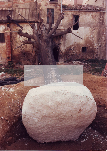 Plantada arbre Pl. Can Dachs 06/02/1989