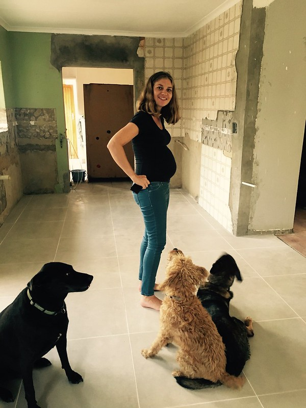 Kitchen renovation: a pregnant Lindsey and the puppies