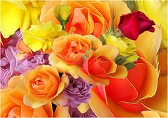 todays bouquet of sunshine. ;0}
