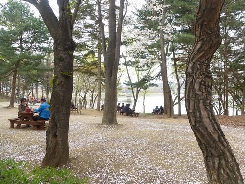C16-Seoul-Grand Parc-j4 (7)