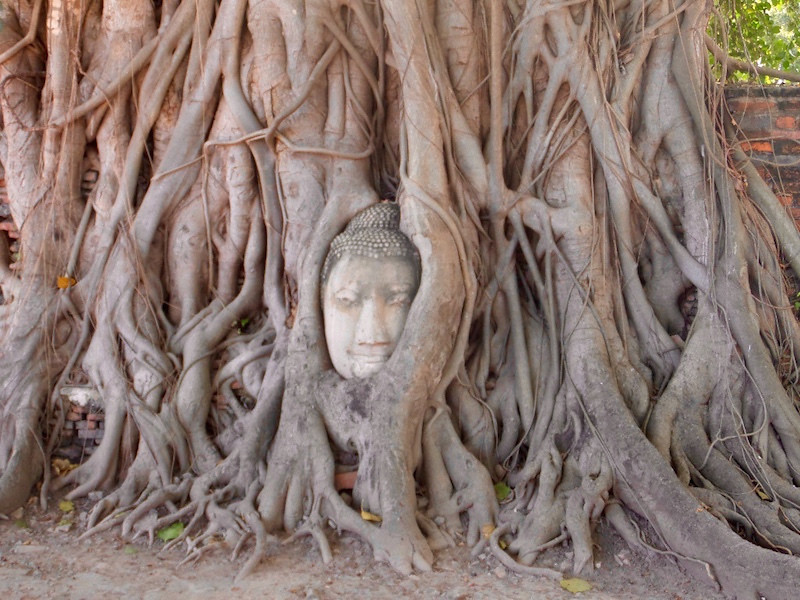 11 Wat Mahathat