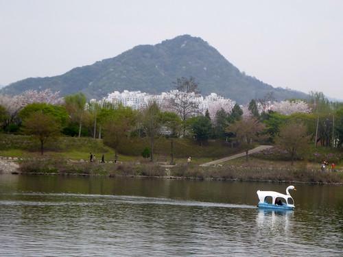 c16-Chuncheon (12)