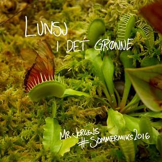 Lunsj i det grønne – Mr Jorgens #Sommermiks2016