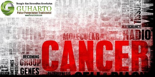 Terapi Kanker Dengan Metode Terapi Lintah