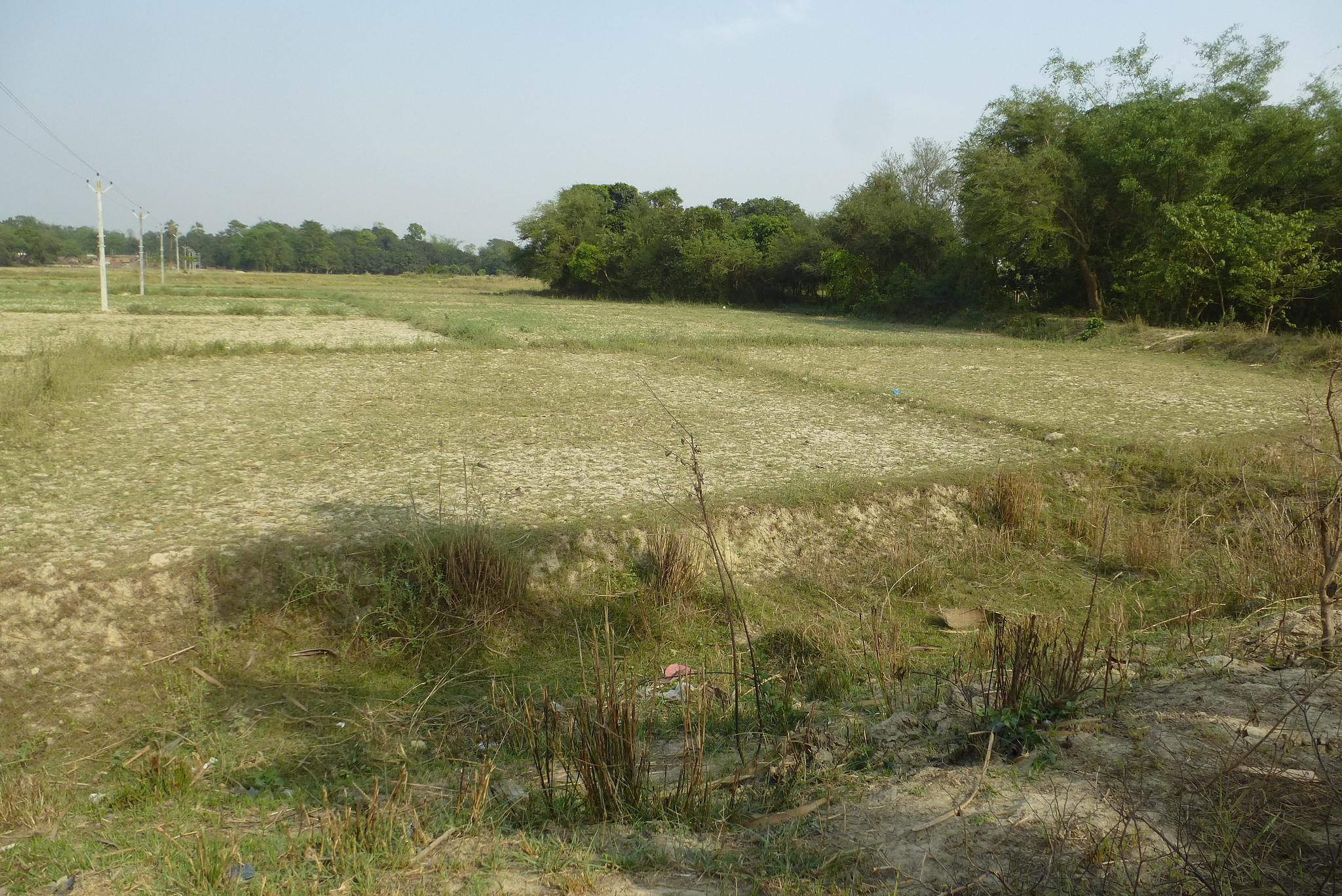 When Kamla ceased to flow through their village, the farmers' source of irrigation dried up. These fields have lain fallow for the last five years due to poor rain.