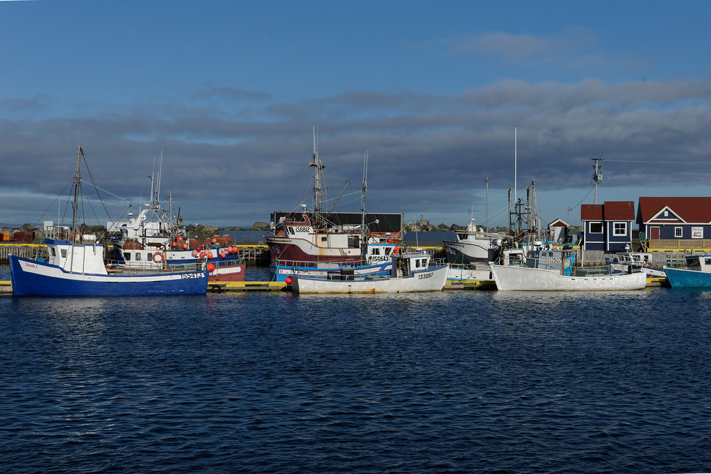 Bonavista Harbor