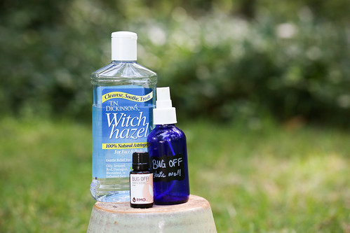 Super Simple Bug Spray Repellent using Essential Oils.
