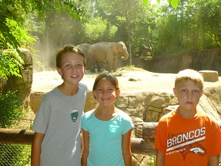 Kiddos at zoo