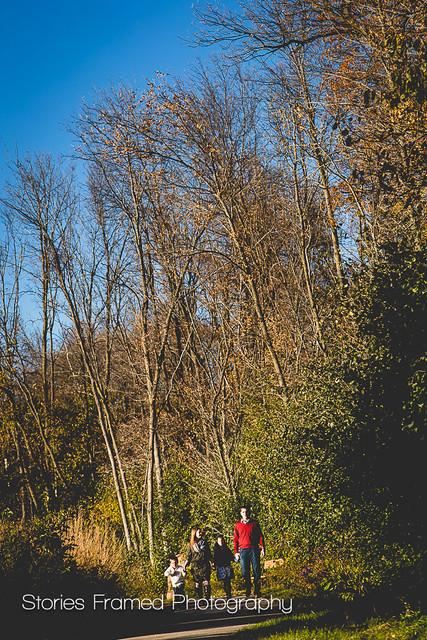 291. | fall park photos.