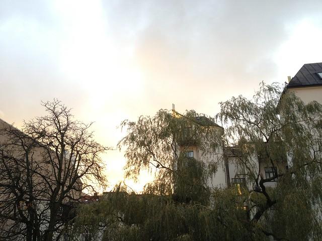 my backyard, helsingborg