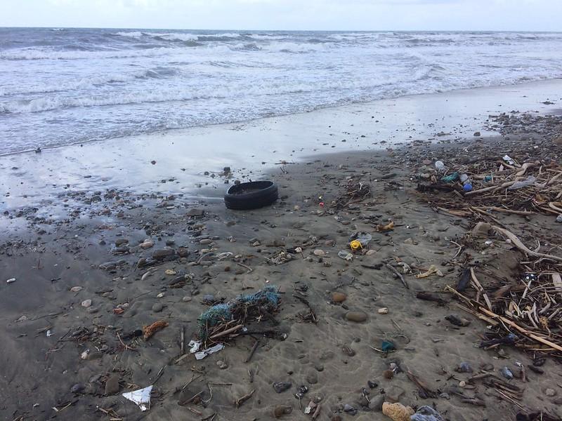 Beach Litter 2016