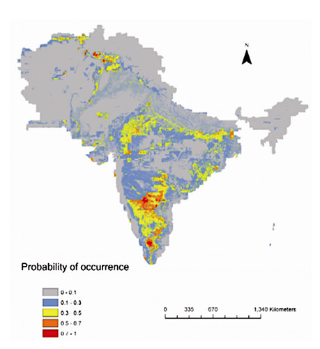 Predicted distribution model of Ashokan edicts on the basis of geology, population, climate and topography. From currentscience.ac.in
