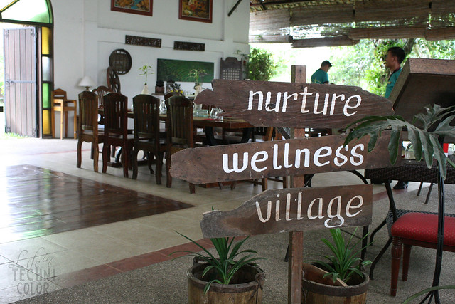 Nurture Wellness Village